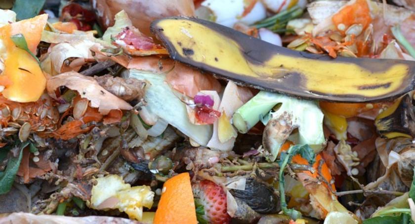 Gospodarka odpadami, Kompostownia Radiowie wreszcie została zamknięta! - zdjęcie, fotografia