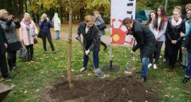 Milion Drzew dla Warszawy