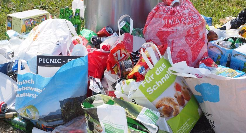 Handel i usługi, zasady segregacji śmieci - zdjęcie, fotografia
