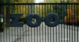 Powitaj wiosnę w zoo