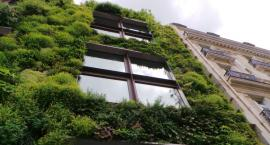 Eko-Praga przyszłości - finał konkursu w Muzeum Warszawskiej Pragi