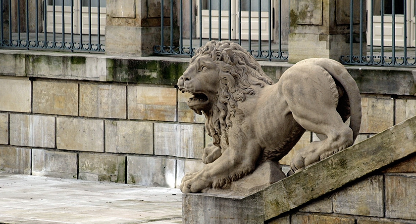 Zwierzęta Śródmieścia , Królewskich Łazienek - zdjęcie, fotografia