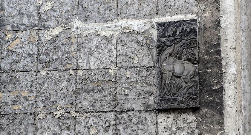 Zwierzęta Śródmieścia , Jeleń - zdjęcie, fotografia