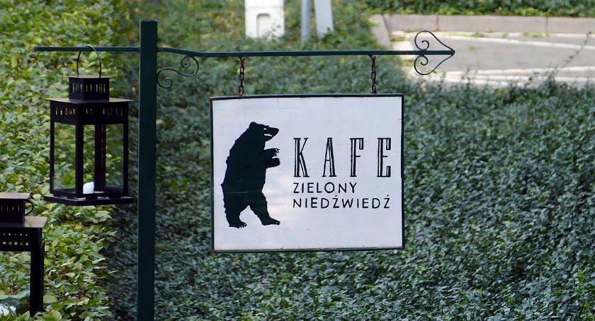 Zwierzęta Śródmieścia , Niedźwiedź - zdjęcie, fotografia