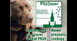 Centrum Warszawy wzbogaci się o kolejne toalety dla psów