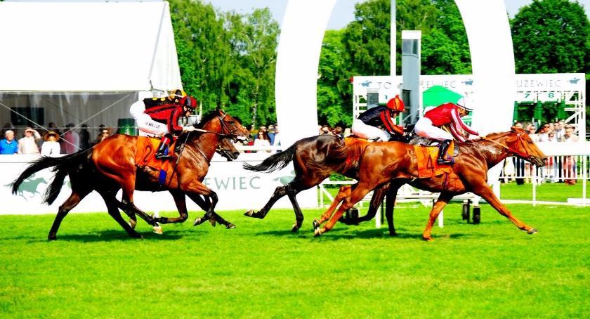 Inne dyscypliny, niedziele inauguracja sezonu wyścigów konnych Służewcu - zdjęcie, fotografia