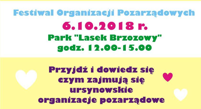Imprezy, Festiwal Organizacji Pozarządowych - zdjęcie, fotografia