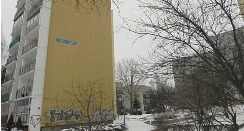 Zwierzęta, Ptasie mieszkanie pustej ścianie konkurs projekt muralu - zdjęcie, fotografia