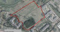 Jest raport z konsultacji dotyczących parku na Ursynowie