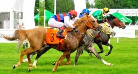 Dzień Latynoamerykański na Torze Wyścigach Konnych [ZDJĘCIA]