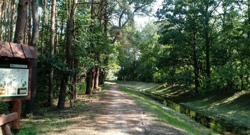 Bieganie, Wkrótce ścieżka biegowa okolicy kanału Ujście - zdjęcie, fotografia