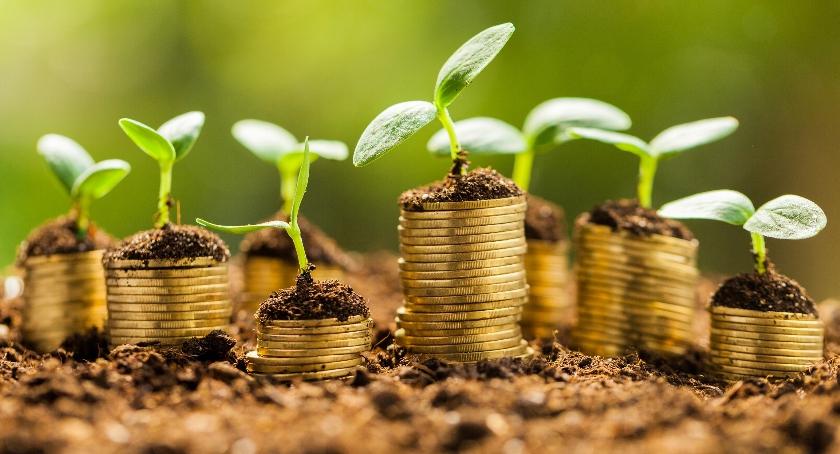 Handel i usługi, Stabilny wzrost Twojego biznesu możliwy - zdjęcie, fotografia