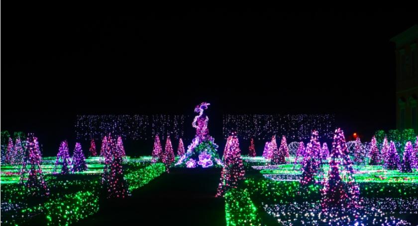 Wystawy, Królewski Ogród Światła wraca Wilanowa - zdjęcie, fotografia