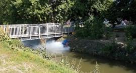 Straż Miejska szuka źródła zanieczyszczenia Potoku Służewieckiego