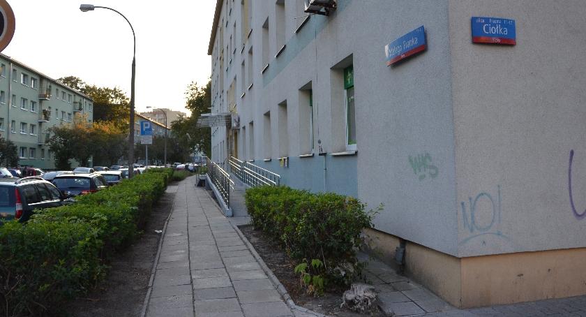 News, dalej ulicą Małego Franka - zdjęcie, fotografia