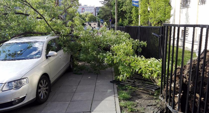 Bezpieczeństwo, Rogalińskiej uszkodzone samochody - zdjęcie, fotografia