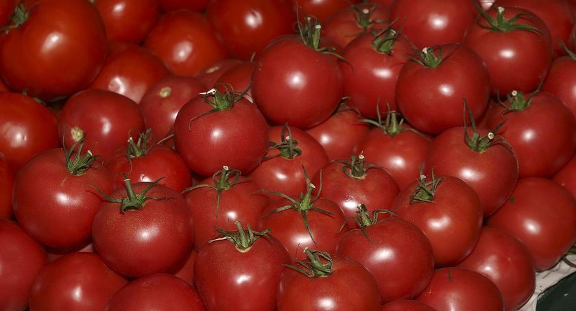 Handel i usługi, Tanieją gwałtownie pomidory - zdjęcie, fotografia