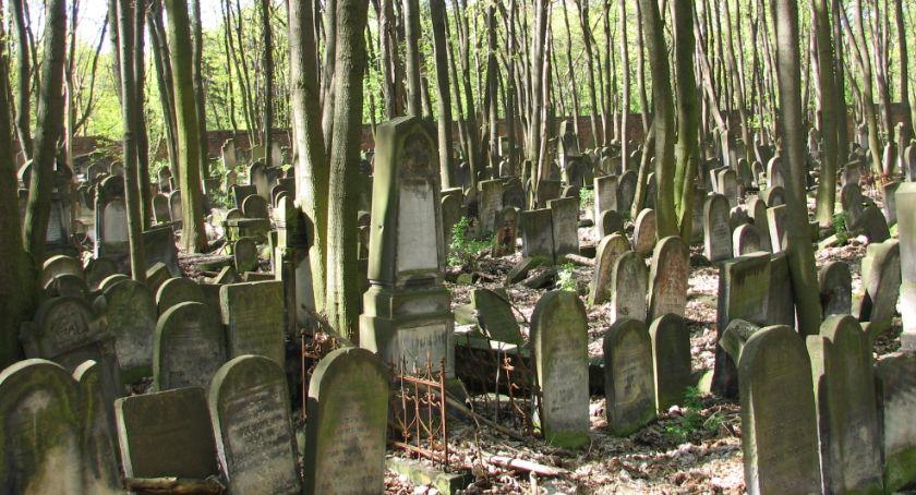Historia, Zapraszamy spacer Cmentarzu Żydowskim - zdjęcie, fotografia