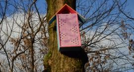Inicjatywa lokalna. Mieszkańcy zdecydowali o budowie budek dla ptaków i hoteli dla owadów.