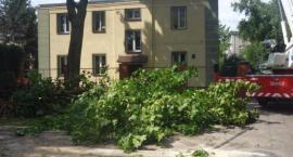 Konar na Okopowej już nie zagraża mieszkańcom