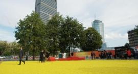 Plac CytryNowy już gotowy