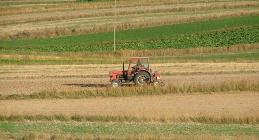 Gospodarka, Tylko środy marca część rolników może złożyć oświadczenia zamiast - zdjęcie, fotografia
