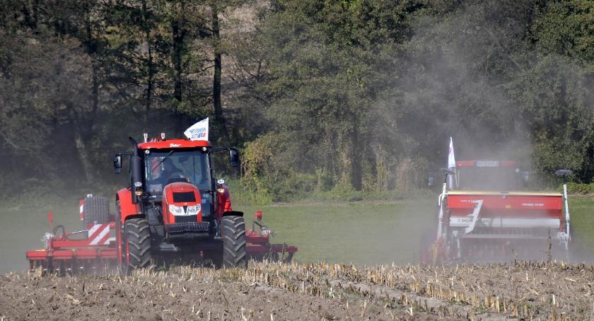 Gospodarka, Pokaz pracy ciągników Zetor maszynami uprawowymi - zdjęcie, fotografia