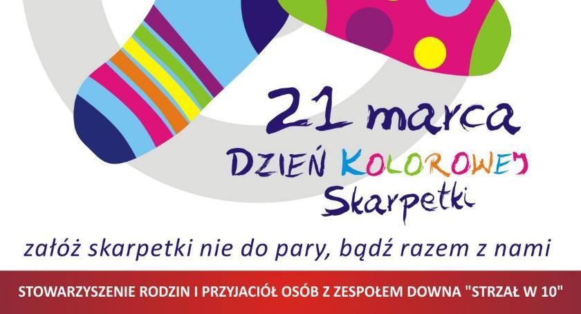 Oświata, marca dzień kolorowej skarpetki - zdjęcie, fotografia