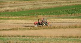 Tylko do środy 14 marca część rolników może złożyć  oświadczenia zamiast