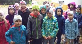 Wycieczka klas pierwszych do lasu- Video