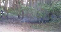Pożar lasu w Rębowie
