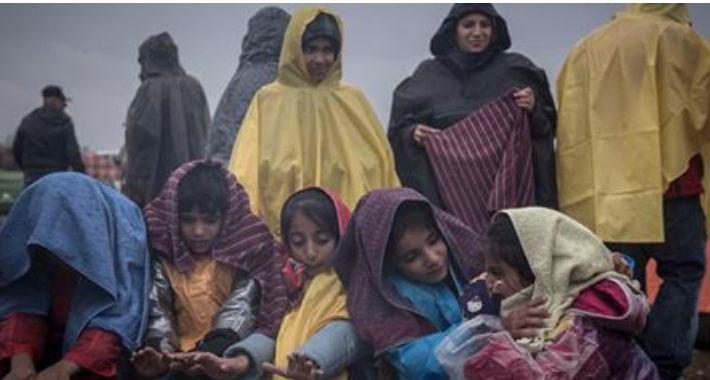 Komunikaty, Uchodźcy Syrii Żyrardowie - zdjęcie, fotografia