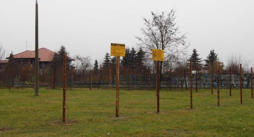Inwestycje, Żyrardów ruszyły prace terenie Parku - zdjęcie, fotografia