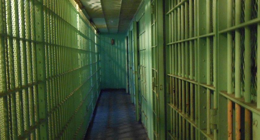 Na sygnale, Poszukiwani zatrzymani udany weekend policji - zdjęcie, fotografia