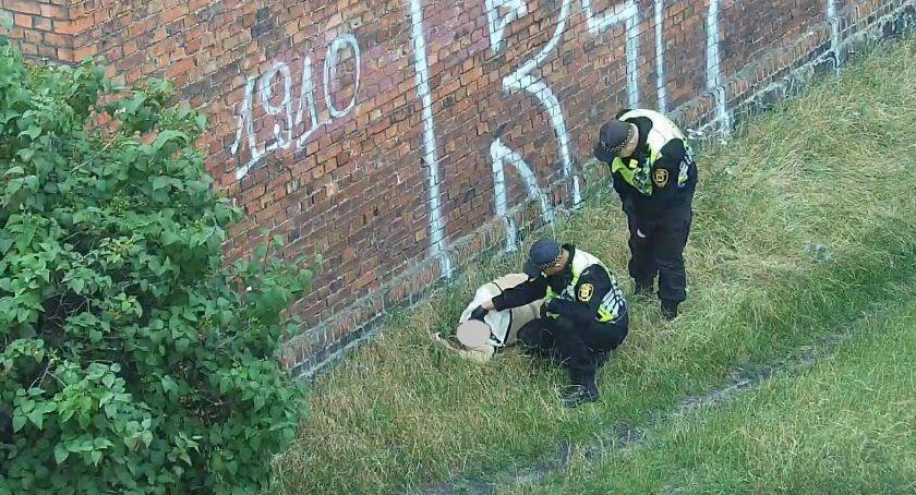 Na sygnale, Przespał trawniku - zdjęcie, fotografia