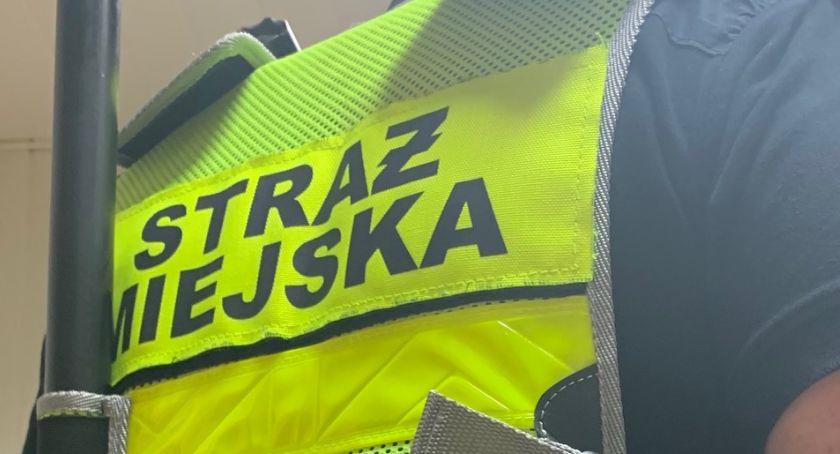 Na sygnale, Kronika Straży Miejskiej - zdjęcie, fotografia