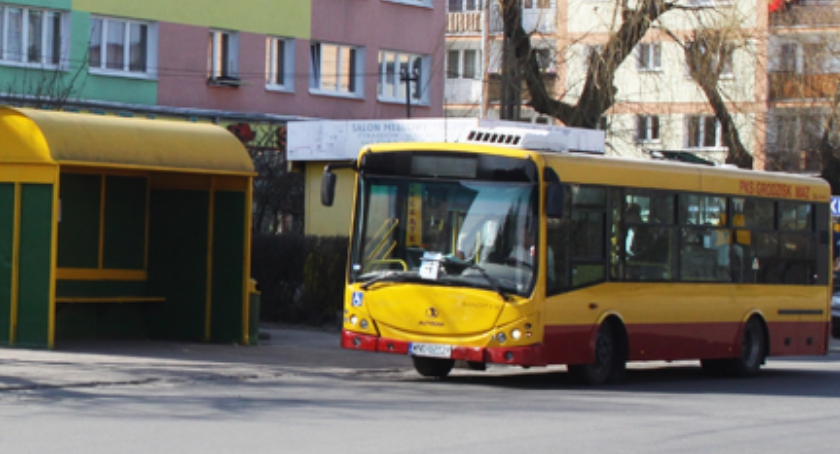 Komunikaty, rozkład jazdy autobusów komunikacji miejskiej - zdjęcie, fotografia