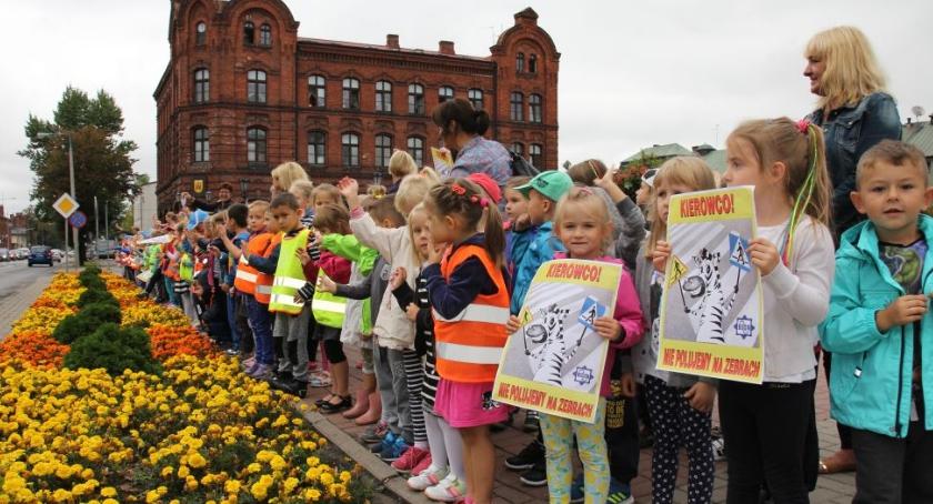 Komunikaty, Akcja polujemy zebrach żyrardowskich szkołach - zdjęcie, fotografia