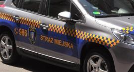 Kronika Straży Miejskiej 15.07.-21.07.2019