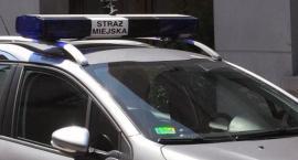 Kronika Straży Miejskiej 22.07.-28.07.2019