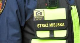 Kronika Straży Miejskiej 29.07.2019-04.08.2019