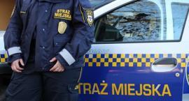 Kronika Straży Miejskiej 05 - 11.08.2019 r