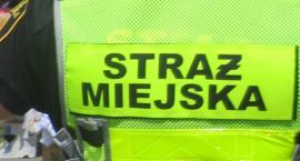 Kronika Straży Miejskiej 26.08 - 01.09.2019 r