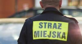 Kronika Straży Miejskiej 02.09 - 08.09.2019
