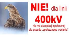 Przeciw linii 400 kV na rondzie w Mszczonowie