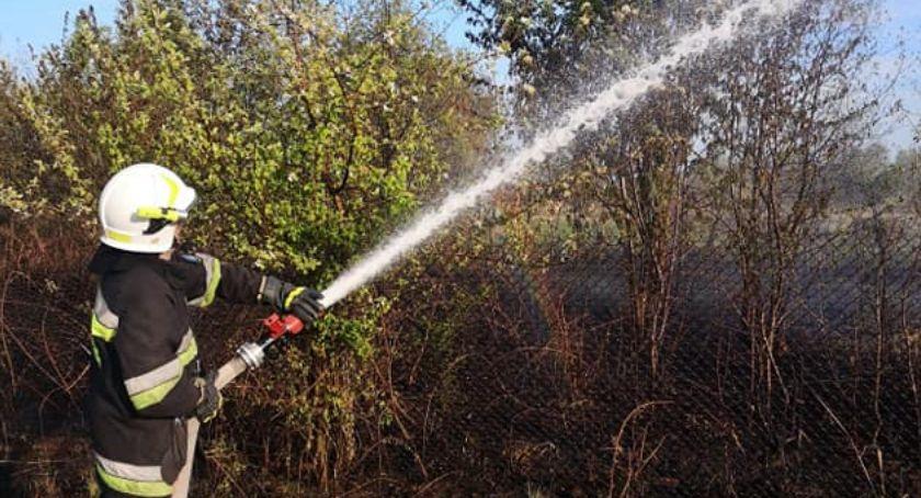 Pożary i wypadki, Pożar okolicy Starbacicha - zdjęcie, fotografia