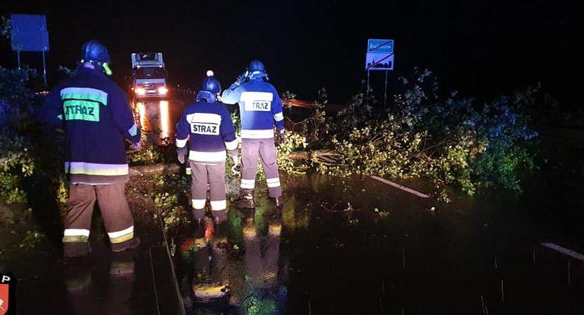 Pożary i wypadki, Powalone drzewo - zdjęcie, fotografia