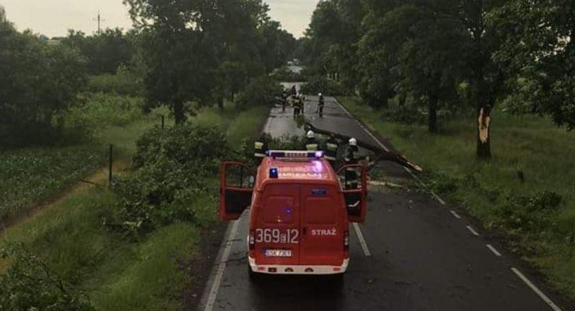 Pożary i wypadki, całkowicie zablokowana przez powalone drzewa - zdjęcie, fotografia