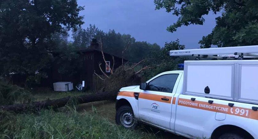 Pożary i wypadki, Drzewo przewróciło linie energetyczne - zdjęcie, fotografia