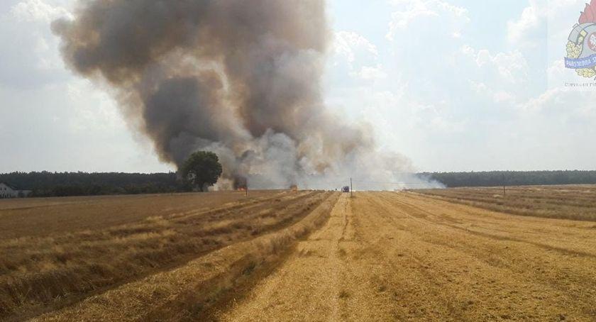 Pożary i wypadki, Spłonęło zboża - zdjęcie, fotografia